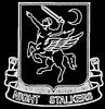 162 Night Stalkers